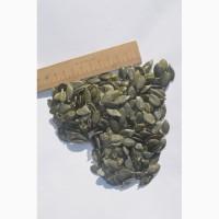 Идеальные тыквенные семечки голосемянные, гарбузове насіння голонасінне