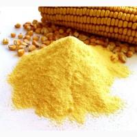 Кукурудзяна товч