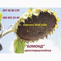 Семена высокоурожайного подсолнечника Бомонд под гранстар, экстра фракция