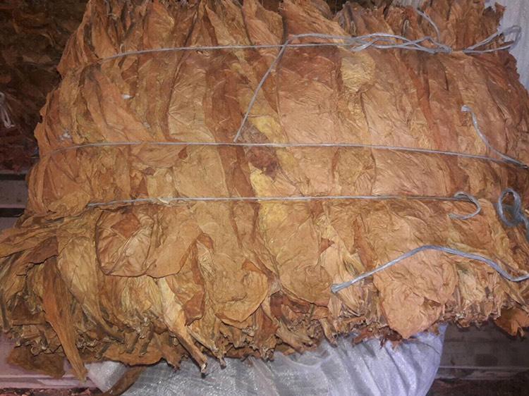 Купить табак листовой оптом сигары оптом в россии