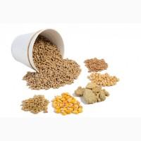 Корма для животных DDGS Сырое соевое масло Жмых соевый Пшеничная мука Пшеничные отруби