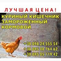Кишечник куриный, кoрмoвoй, замoрoженный в брикетах