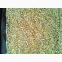 Закупка битої кукурудзи, побічний продукт кукурудзи