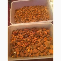 Gallstones available for sale / Ox and Cow Gallstones for sale