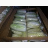 Продам пекикнску капусту