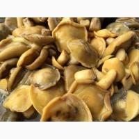 Продам гриби: білі, маслята, польські, опеньки