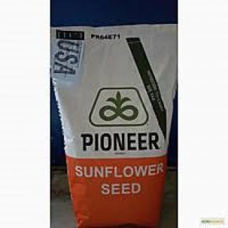 Посівний матеріал насіння соняшнику Піонер Е19