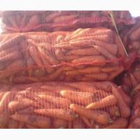 Морковка оптом 2-го сорта