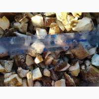 Білий гриб заморожений кубик