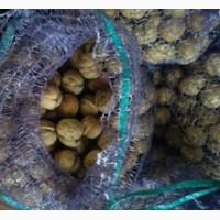 Продам орехи