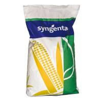 Семена кукурузы НК Кобальт ФАО 320