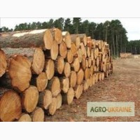 Куплю дрова акации и дуба (кругляк) любой длины