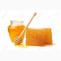 Куплю мед с антибиотиком или забродивший