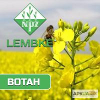 Семена озимого рапса Вотан(Lembke)
