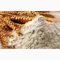 Продам борошно пшеничне 2 сорту