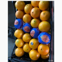 Продам мандарины и апельсины. опт. турция