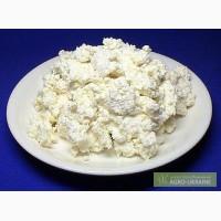 Козяче молоко, сир, творог, бринза, сметана,