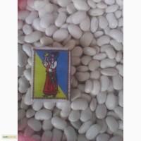 Квасоля Бандоля на насіння