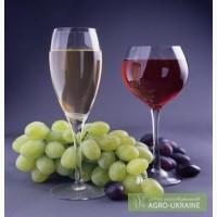 Предлагаю виноматериал изАргентины