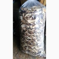 Продам сушеный белый гриб с Кинбурнской косы