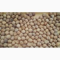 Продам грецкий орех на бой урожай 2019 года
