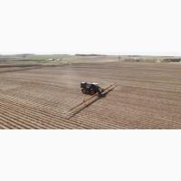 Выгодные условия Закуплю урожай 2020-2019