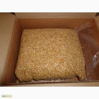 Кедровый орех и продукты его переработки
