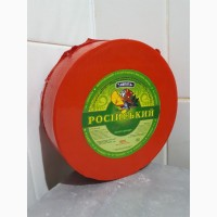 Сир твердий Російський великого циліндру, 50% жира в сухом веществе