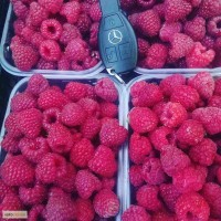 Замороженная малина (Frozen raspberries)