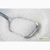Продам сахар в Узбекистан