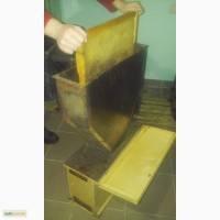 Лейка для формирования безсотовых пчелопакетов