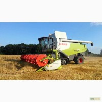 Возьму на длительный срок КОМБАЙНЫ на уборку зерновых