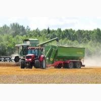 800 га зерновых, 800 га рапса в Ивано-Франковской обл уже уборка найму комбайн, работа