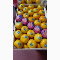 Продам мандарины сорт Miho Wase