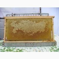 Продам сушь пчелинную на рамки 300, 230, 145