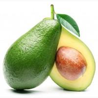 Купим авокадо зелёный