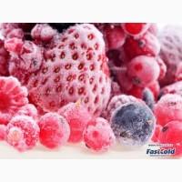 Шоковая заморозка ягод и грибов, недорого