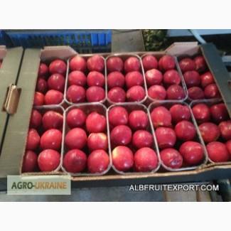 Продается Нектарин сорт персика.экспорт Испания