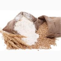 Мука пшеничная высшего сорта оптом