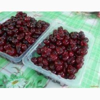 Продажа замороженной вишни оптом
