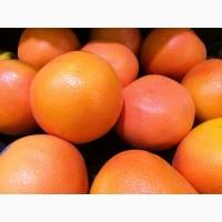 Продам Грейпфрут (ЮАР, 35 калибр, розовый)