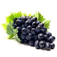 Куплю виноград молдова оптом от конейнера