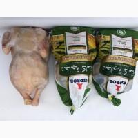 Цыплята Табака.Цыплята Halal Тушки, 0, 800-0, 900-1000гр, Опт