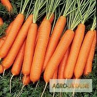 Продам весовые и пакетированные семена моркови ( от производителя)
