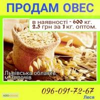 600 кг овесу по 2.5 грн/1кг. Львівська обл м. Золочів