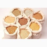 Продам крупи від виробника-ячмінні, перлові, пшеничні, кукурудзяні, горох колотий жовтий
