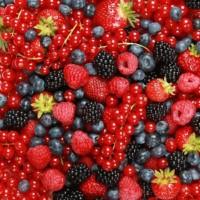 Фрукты и ягоды оптом