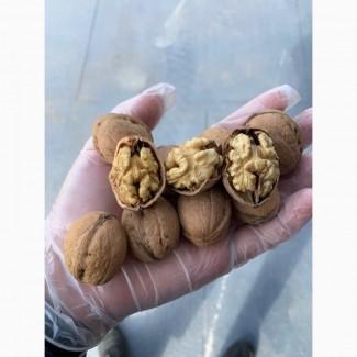 Walnut in shell 28+; 30