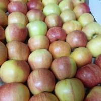 Яблоки оптом со склада в Краснодарском крае