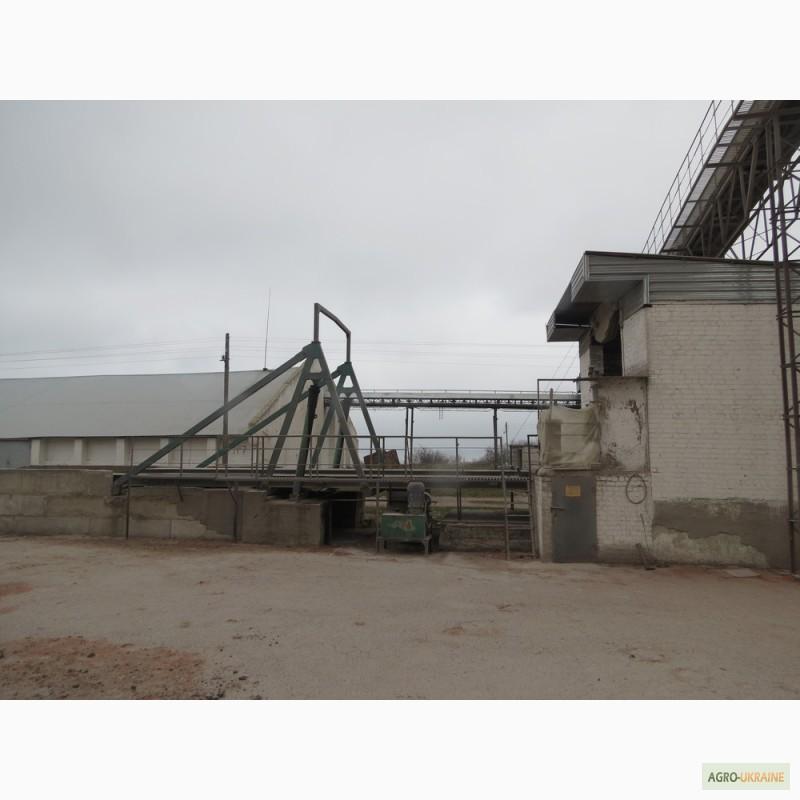 Купить элеватор для зерна бу оборудование для элеваторов зернохранилищ